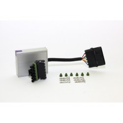 EMU DBW Modul E-Gas